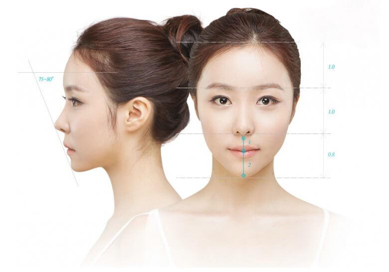 Người Á Đông thường không sở hữu một chiếc mũi cao